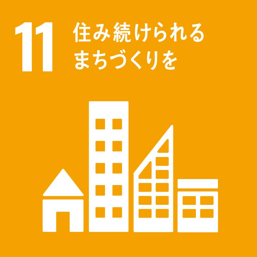 11 SDGs