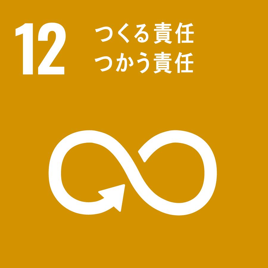 12 SDGs