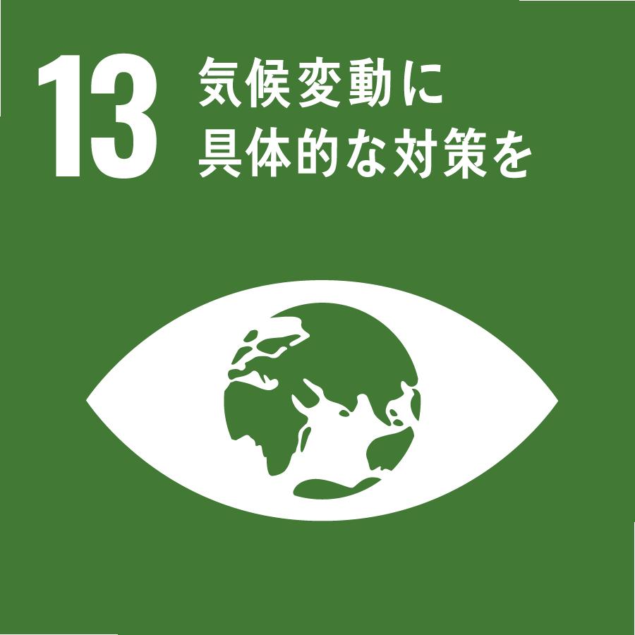 13 SDGs