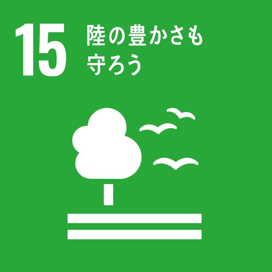 15 SDGs
