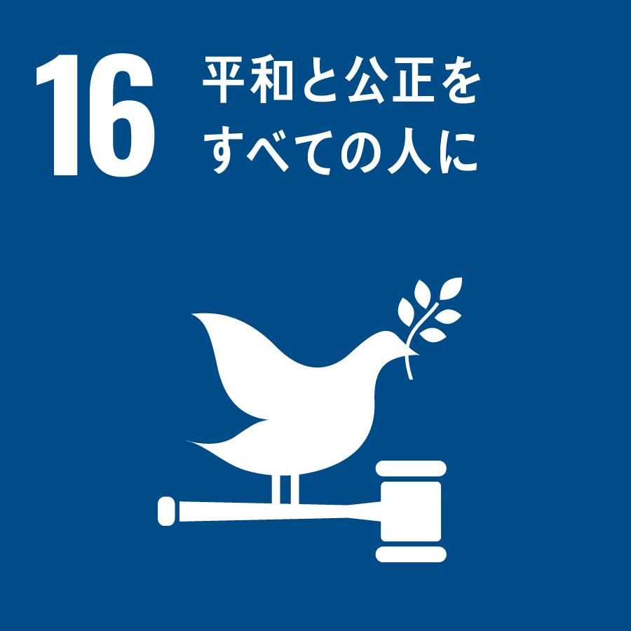 16 SDGs