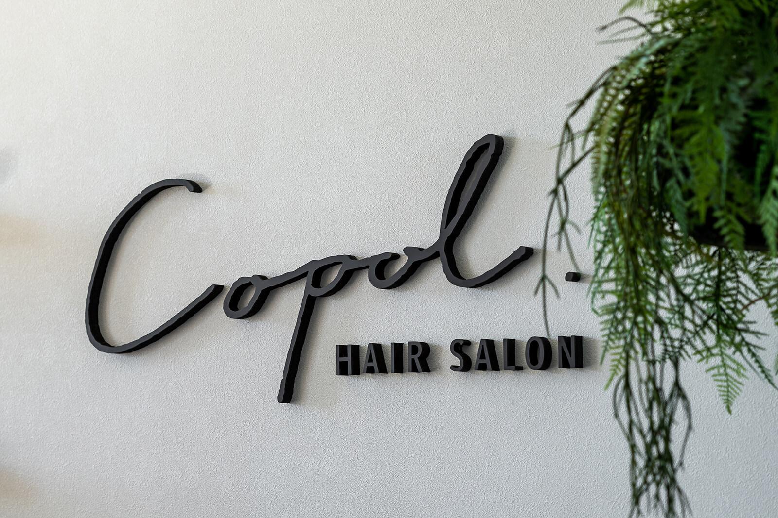 hair salon Copol
